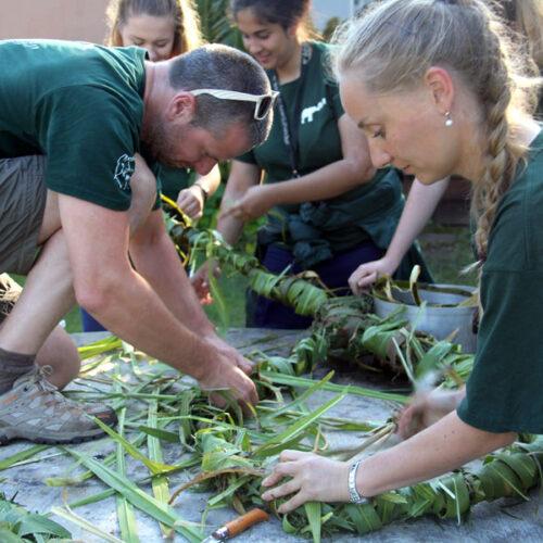 About The Volunteer Program